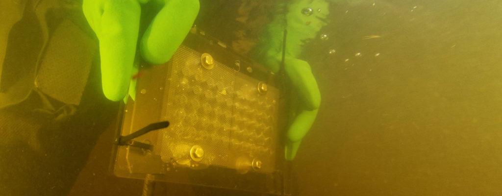 Raakunpoikasilla ensimmäinen talvi jokivedessä